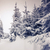 inverno · fantástico · paisagem · parque · Ucrânia · europa - foto stock © Leonidtit
