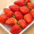 клубника · пакет · фрукты · фон · таблице · свежие - Сток-фото © leungchopan