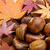 Chestnut and maple leave in Autumn stock photo © leungchopan