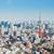 Tóquio · torre · linha · do · horizonte · Japão · cidade · montanha - foto stock © leungchopan