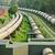 rurociąg · gazu · rury · line · zawór · zielone - zdjęcia stock © leungchopan
