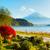 fuji · outono · árvore · paisagem · lago · vermelho - foto stock © leungchopan