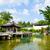 Çin · stil · giriş · görmek · bahçe - stok fotoğraf © leungchopan