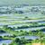 魚 · 池 · ファーム · 水産養殖 · 水 - ストックフォト © leungchopan