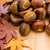 Chestnut and dry maple leave on wooden background stock photo © leungchopan