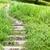 kamień · schodów · zewnątrz · drogowego · charakter · ogród - zdjęcia stock © leungchopan