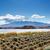 mountain fuji and lake kawaguchiko stock photo © leungchopan