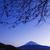 fuji · noite · neve · montanha · nascer · do · sol · lago - foto stock © leungchopan