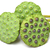 boeket · lotus · zaad · peul · natuur · plant - stockfoto © leungchopan