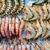 fraîches · crevettes · crevettes · eau · marché · rivière - photo stock © leungchopan