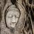 Будду · голову · старые · дерево · стены · азиатских - Сток-фото © leungchopan