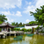 chinese traditional garden stock photo © leungchopan