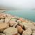 rock jetty stock photo © leungchopan