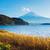 fuji · lago · outono · paisagem · montanha · japonês - foto stock © leungchopan