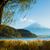 fuji · lago · montanha · rio · planta · japonês - foto stock © leungchopan