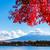 fuji · outono · lago · rio · planta · japonês - foto stock © leungchopan