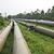 csővezeték · benzin · cső · vonal · szelep · zöld - stock fotó © leungchopan