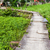 wooden path in countryside stock photo © leungchopan