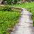 bois · marche · façon · Hong-Kong · parc · printemps - photo stock © leungchopan