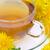pissenlit · feuilles · vertes · isolé · blanche · nature · feuille - photo stock © lianem