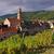 Frankrijk · hart · wijngaard · weg · wijn · kerk - stockfoto © lianem