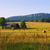 montanhas · Polônia · primavera · grama · paisagem · campo - foto stock © lianem