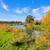 foresta · torrente · scenico · view · piacevole · Hill - foto d'archivio © lianem