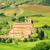 manastır · Toskana · İtalya · çim · orman · manzara - stok fotoğraf © lianem