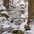 заморожены · ручей · красивой · текстуры · льда · природы - Сток-фото © lianem