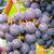 su · üzüm · şarap · yaprak · cam · yeşil - stok fotoğraf © lianem