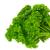 petrezselyem · izolált · friss · fehér · étel · zöld - stock fotó © lianem