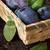 fresh plums stock photo © lidante
