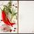 Uwaga · przepis · przyprawy · tabeli · żywności · notebooka - zdjęcia stock © lidante