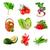 свежие · овощи · изолированный · белый · воды · красный - Сток-фото © lidante