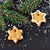 christmas gingerbread stock photo © lidante