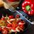 tomates · cerises · fraîches · jardin · tomates · santé - photo stock © lidante