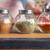 otlar · baharatlar · gıda · grup · konteyner · renk - stok fotoğraf © lightfieldstudios