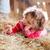 meisje · hooi · mooie · spelen · meisje · glimlach - stockfoto © Lighthunter