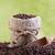 merítőkanál · kávé · rusztikus · pörkölt · grunge · viharvert - stock fotó © lightkeeper