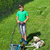 gazon · labrador · samen · hond · zomer - stockfoto © lightkeeper