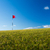 golf · campo · da · golf · rosso · bandiera · montagna · verde - foto d'archivio © lightpoet
