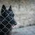 犬 · ケージ · 悲しい · 見える · 犬 - ストックフォト © lightpoet