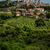 panoramik · görmek · Toskana · kule - stok fotoğraf © lightpoet