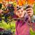 Woman picking grape during wine harvest stock photo © lightpoet