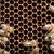 macro · tiro · abelhas · favo · de · mel · jardim · quadro - foto stock © lightpoet