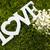 любви · воздуха · зеленый · слово · пышный · хорошо - Сток-фото © lightpoet