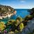 ver · Marselha · costa · França · praia · água - foto stock © lightpoet