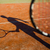 shadow of a tennis player in action on a tennis court stock photo © lightpoet