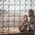 猿 · 種 · 後ろ · バー · 監禁 · 愛 - ストックフォト © lightpoet