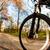 bisiklet · binicilik · şehir · park · gün - stok fotoğraf © lightpoet